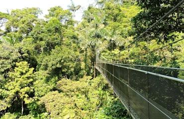 Mistico Hanging Bridges Arenal Costa Rica 2