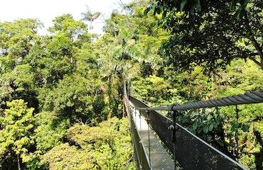 Mistico Hanging Bridges Arenal Costa Rica 3
