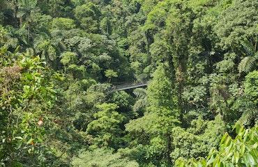 Hanging Bridges Hike Photo 3