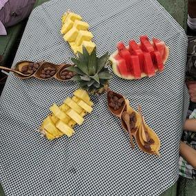 Rainforest Explorers Gastronomy