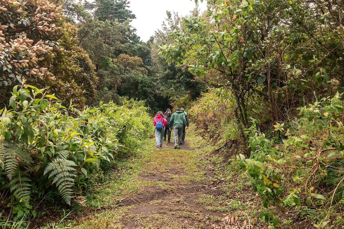Curi Cancha Monteverde Hiking Tours