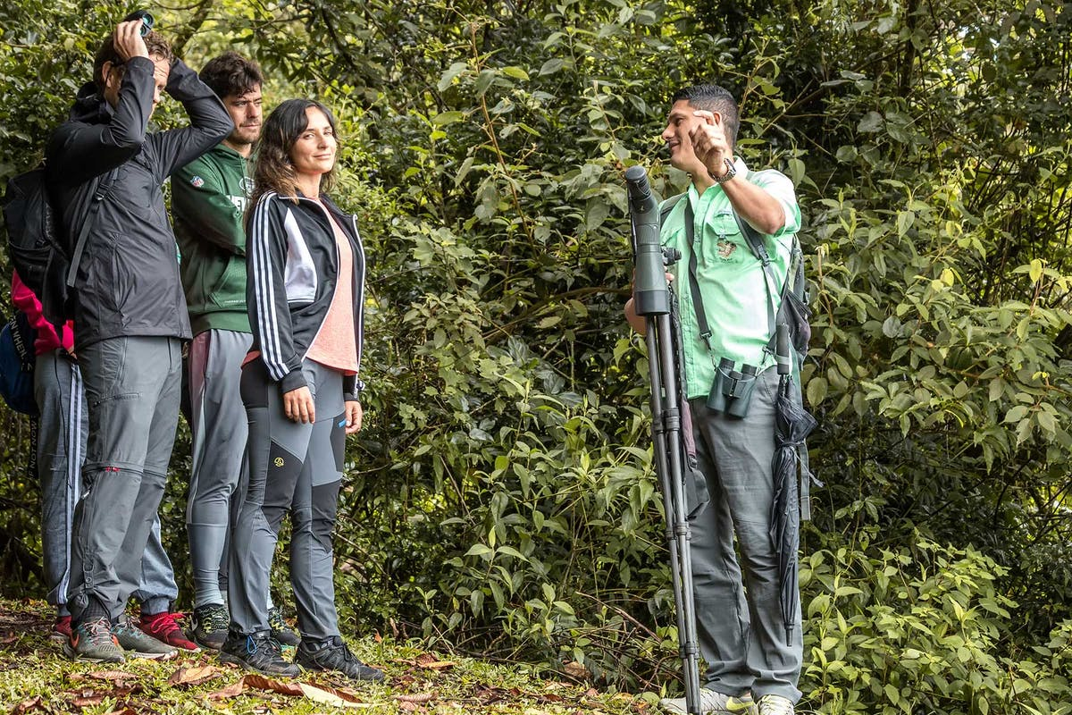 Guided tours at Curi Cancha Reserve