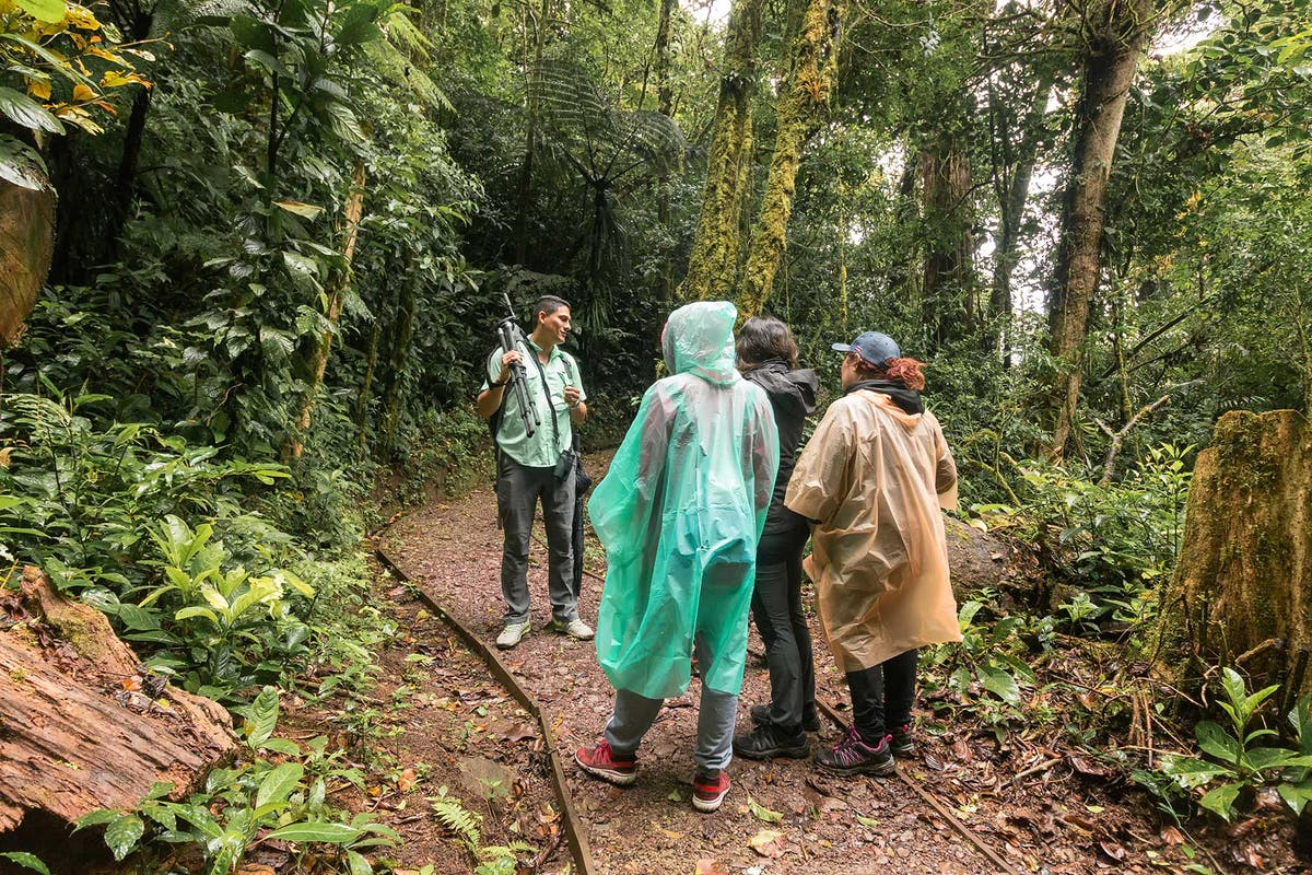 Guided tour at Curi Cancha Reserve