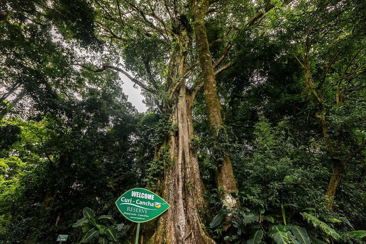 Curi Cancha Reserve Entrance