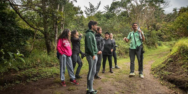 Curi Cancha Cloud Forest Reserve Guided Walk