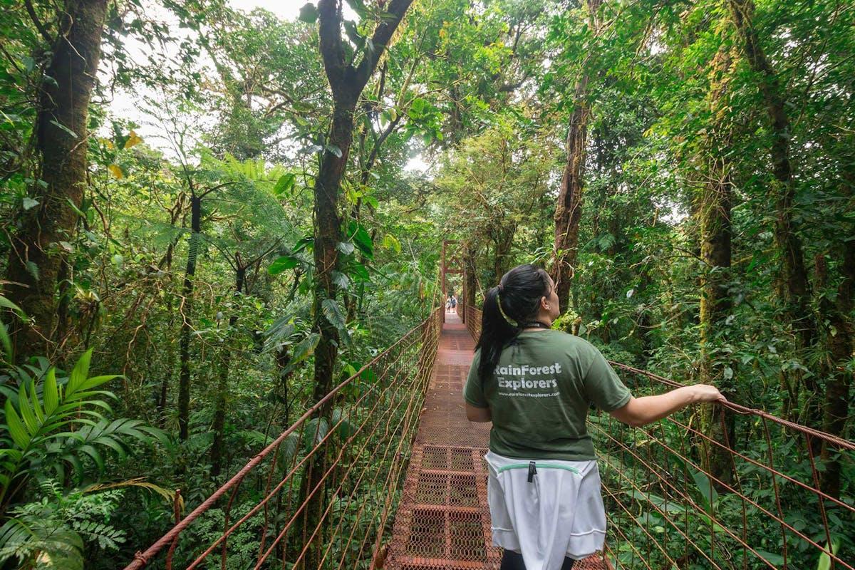 Hanging Bridge at Monteverde Cloud Forest