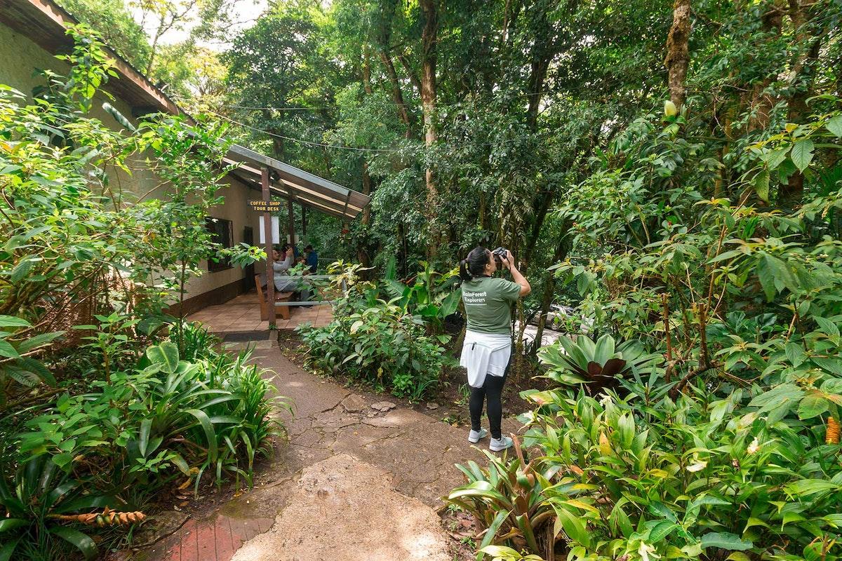 Monteverde Humming Garden
