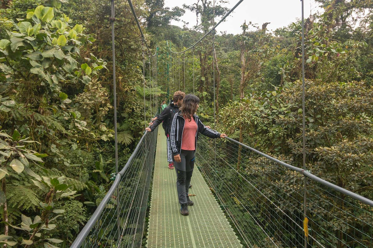 Bridges Sky Walk Monteverde