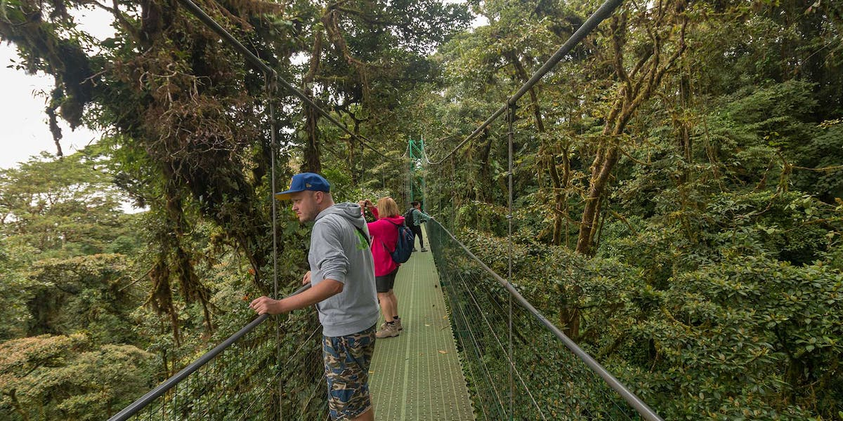 Sky Walk Hanging Bridges
