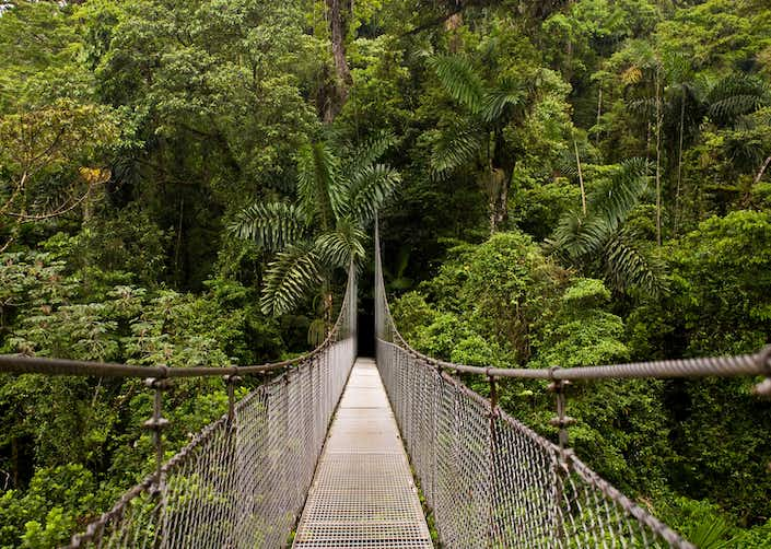 Arenal Hanging Bridges Guided Tour