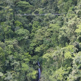 La Fortuna Hanging Bridges