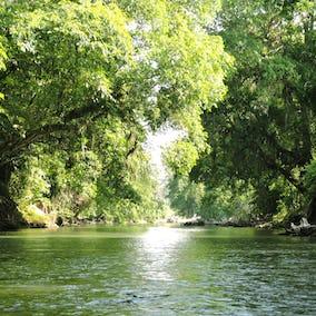 Costa Rica Safari River