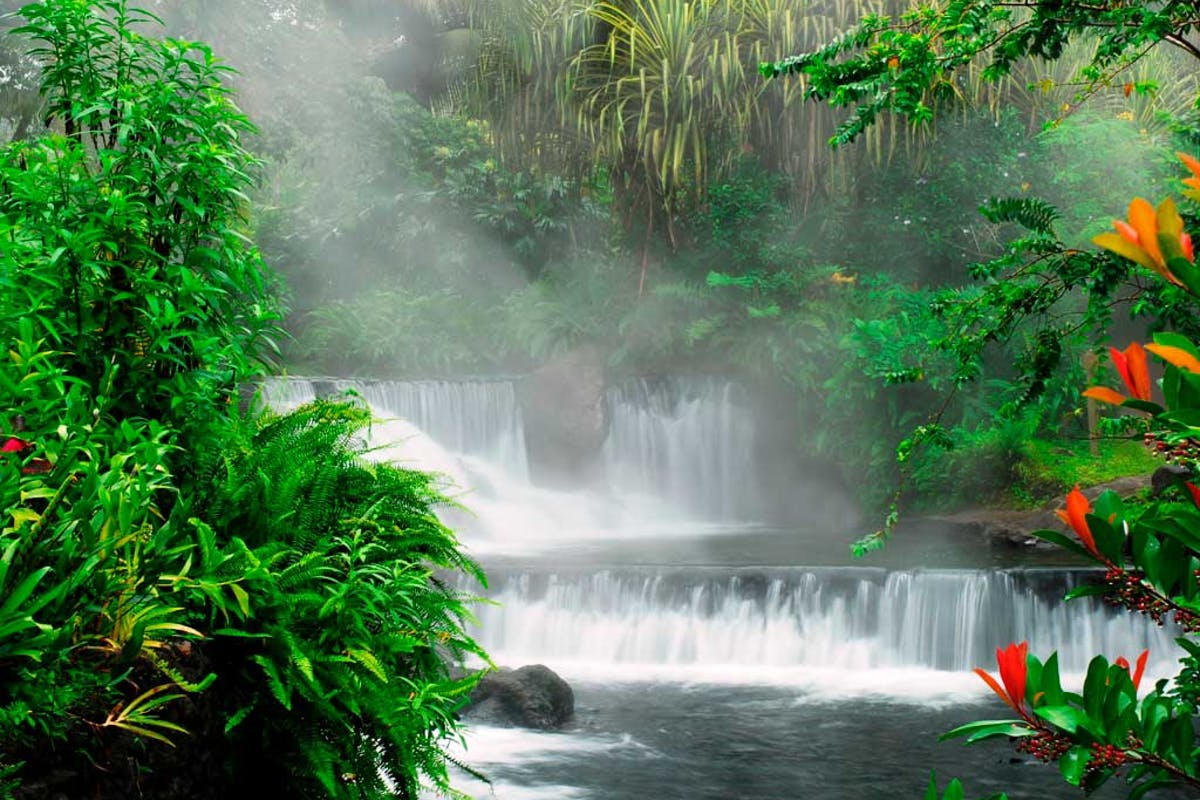 Tabacon Hot Springs Photo 10
