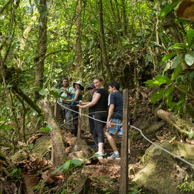 Arenal Volcano Hike Photo 4